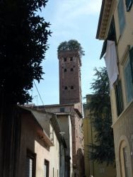 2009 Toskana 12