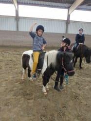 2015 Ponyhof 08